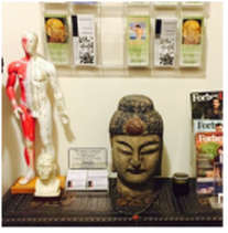 Five Element Acupuncture New York City
